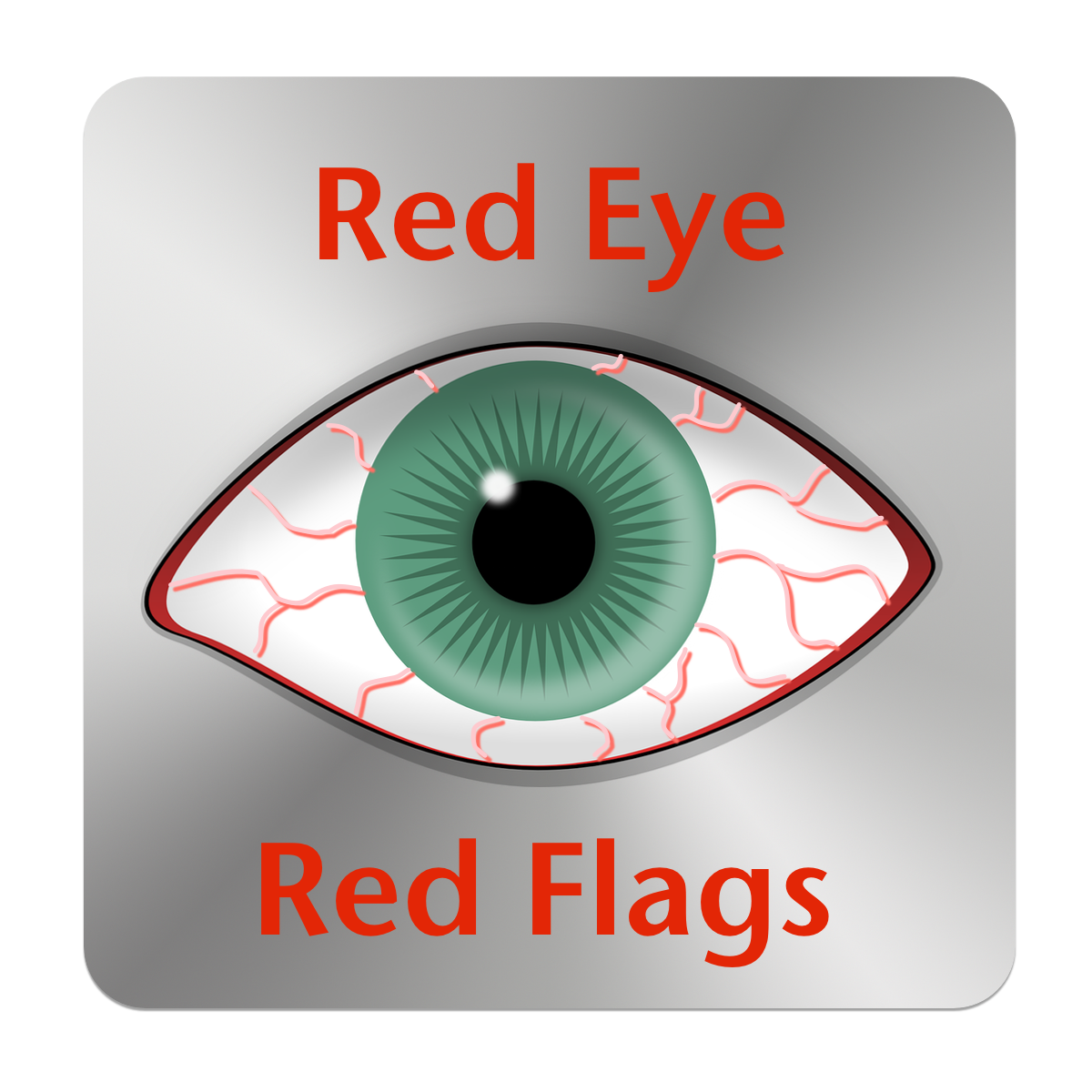 Red Eye Red Flags App